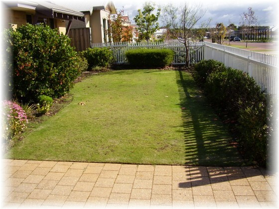 Another example of typical garden without Garden Edging or kerbing